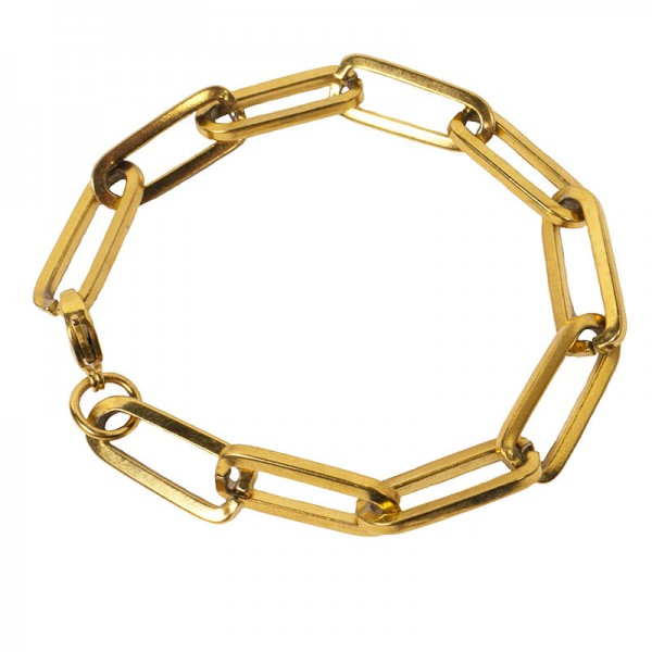 AD Women's Bracelet Chain Gold Paparclip Steel Thick
