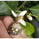 Cosmochaos Silver Flower Rosette Ring with Quartz
